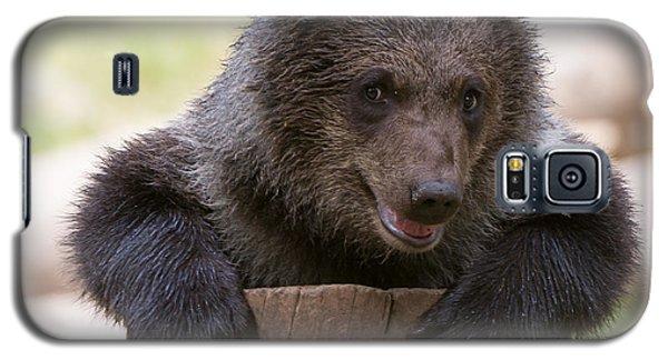 Bear Cub Galaxy S5 Case