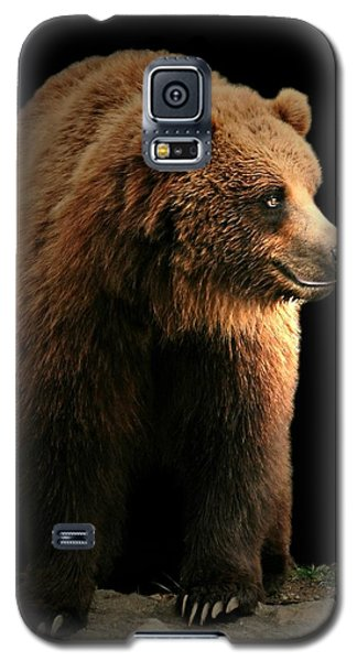 Bear Essentials Galaxy S5 Case by Diana Angstadt