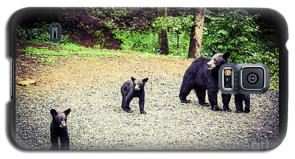 Bear Family Affair Galaxy S5 Case by Jan Dappen