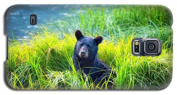 Bear Grass Galaxy S5 Case