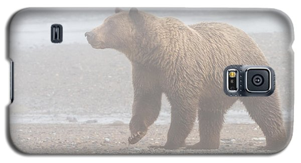 Bear In Fog Galaxy S5 Case