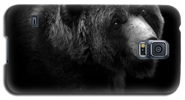 Bear Galaxy S5 Case - Portrait Of Bear In Black And White by Lukas Holas