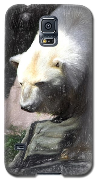 Bear Visions Galaxy S5 Case