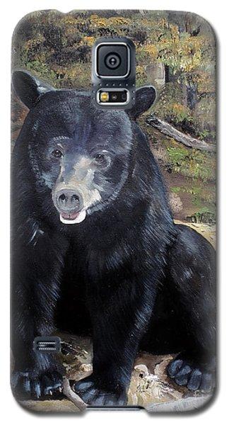 Bear - Wildlife Art - Ursus Americanus Galaxy S5 Case