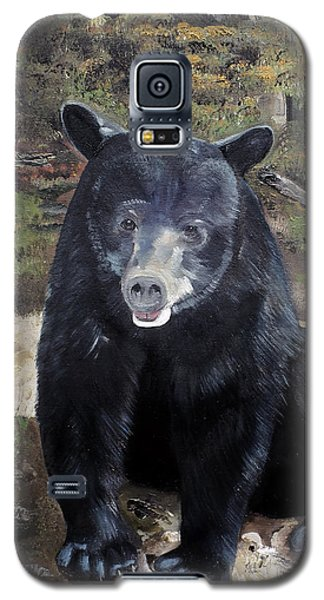 Bear - Wildlife Art - Ursus Americanus Galaxy S5 Case