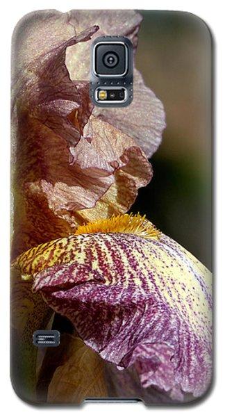 Bearded Iris #1 Galaxy S5 Case