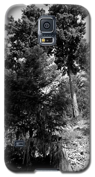 Galaxy S5 Case featuring the photograph Bearded Trees - Whistler by Amanda Holmes Tzafrir