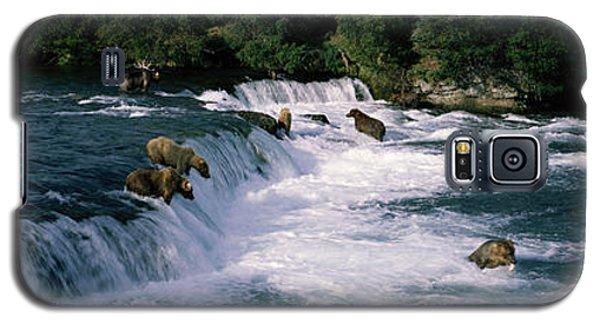 Brown Bear Galaxy S5 Case - Bears Fish Brooks Fall Katmai Ak by Panoramic Images