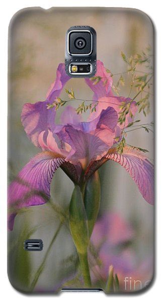 Beautiful And Mystical Iris  Galaxy S5 Case