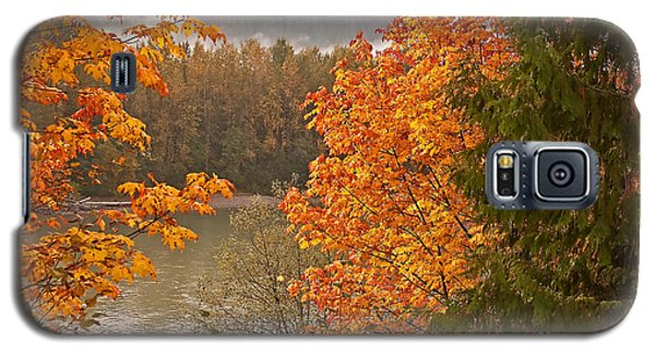 Galaxy S5 Case featuring the photograph Beautiful Autumn Gold Art Prints by Valerie Garner