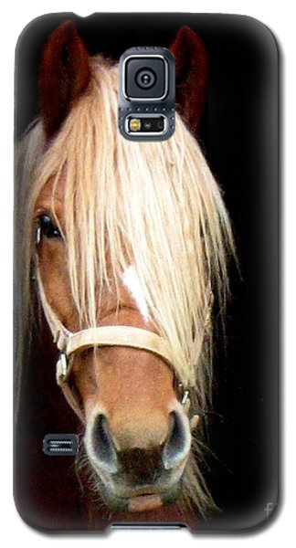 Galaxy S5 Case featuring the photograph Beautiful Bella by Wendy Coulson