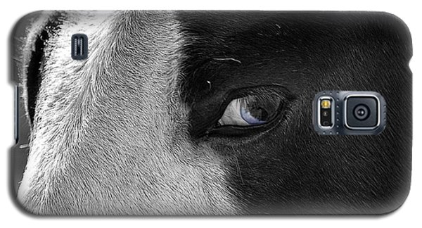 Beautiful Blind Soul Horse Galaxy S5 Case