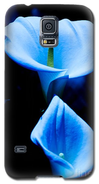 Beautiful Blue Calla Lilies Galaxy S5 Case
