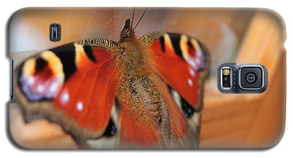 Beautiful Butterfly Galaxy S5 Case