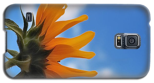 Beautiful Day Galaxy S5 Case by Steven Milner