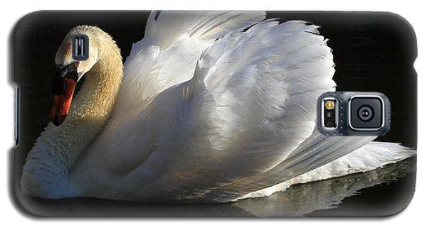 Beautiful Display Galaxy S5 Case