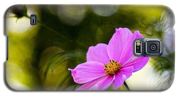 Galaxy S5 Case featuring the photograph Beautiful Evening Pink Cosmos Wildflower by Tracie Kaska