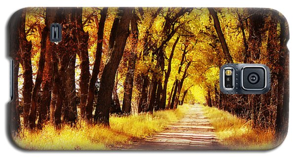 Beautiful Fall Day In Nebraska Galaxy S5 Case