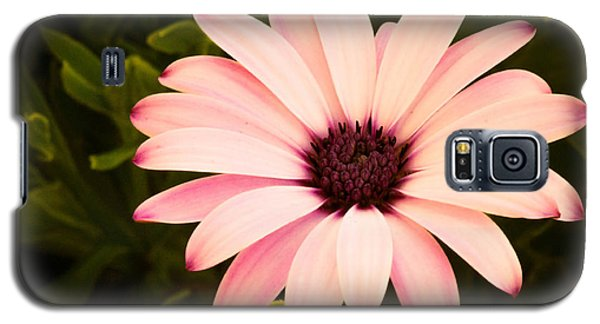 Beautiful Flower  Galaxy S5 Case by Trace Kittrell