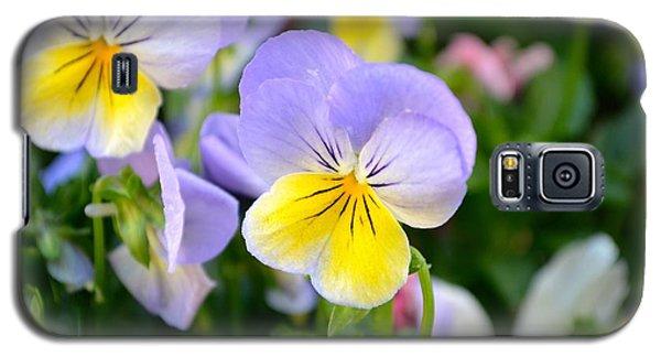 Beautiful Flowers Galaxy S5 Case by Alex King