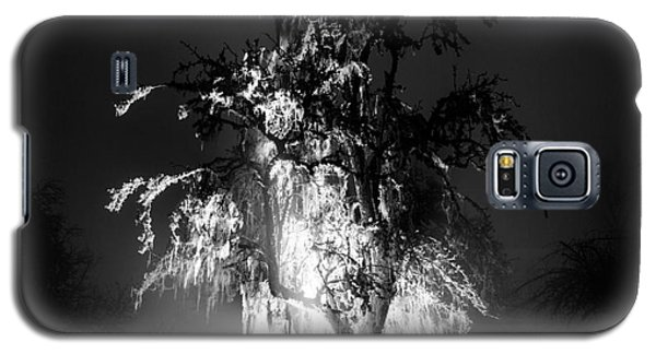 Beautiful Foggy Night 1 Galaxy S5 Case