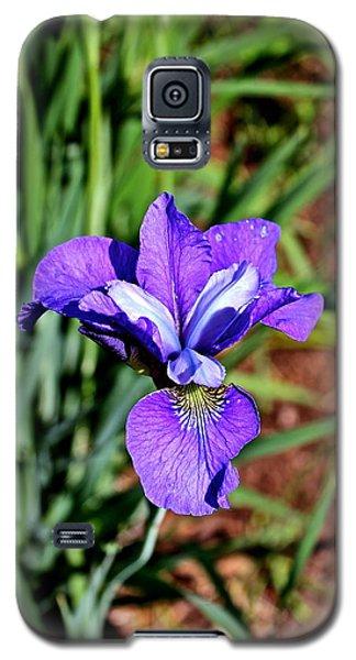 Beautiful Iris Galaxy S5 Case