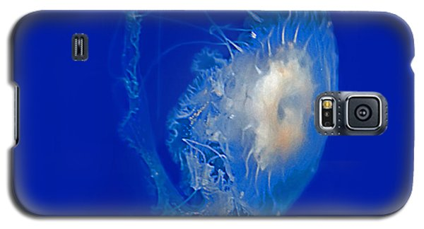 Beautiful Jelly Fish Art Prints Galaxy S5 Case