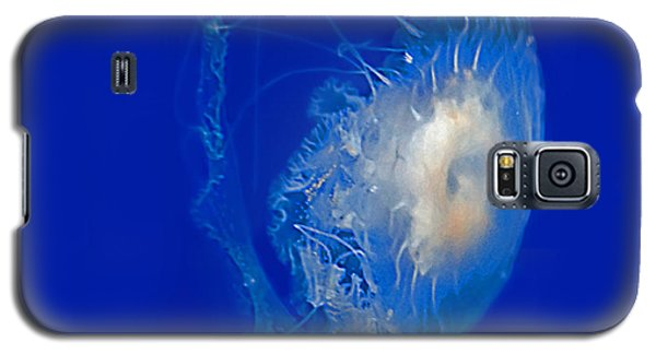 Beautiful Jelly Fish Art Prints Galaxy S5 Case