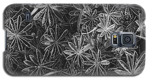 Beautiful Leaves Galaxy S5 Case by Cassandra Buckley