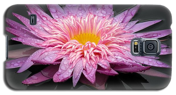 Beautiful Lily Galaxy S5 Case
