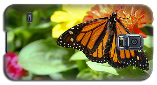 Galaxy S5 Case featuring the photograph Beautiful Monarch Butterfly by Patrice Zinck