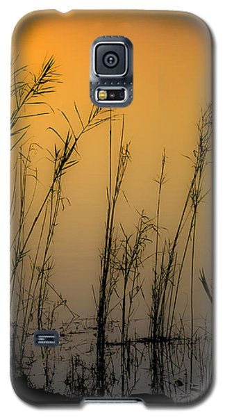 Beautiful Nature Galaxy S5 Case