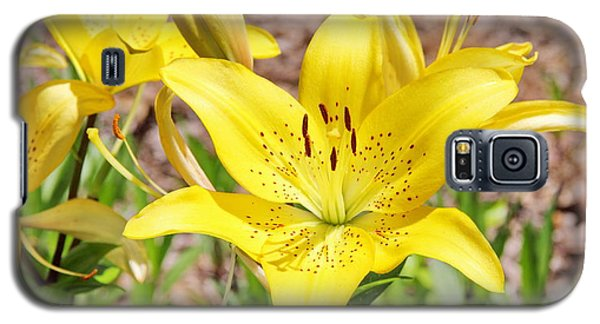 Beautiful Open Yellow Lily Galaxy S5 Case