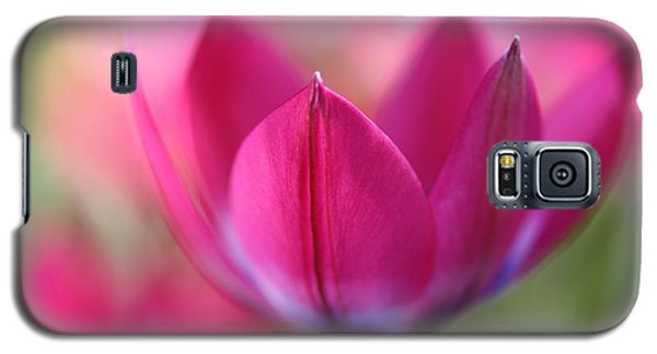 Beautiful Pink Galaxy S5 Case