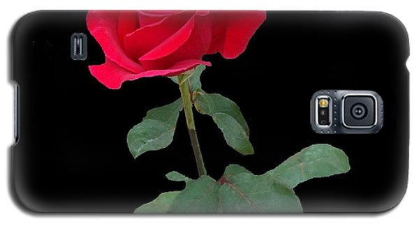 Beautiful Red Rose Galaxy S5 Case by Janette Boyd