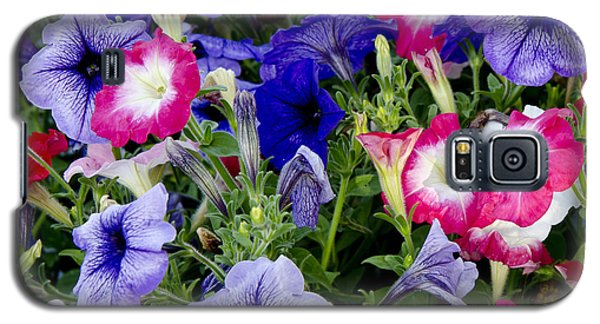 Beautiful Summer Annuals Galaxy S5 Case by Wilma  Birdwell