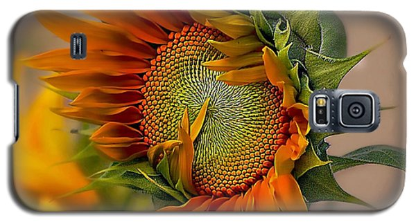 Beautiful Sunflower Galaxy S5 Case