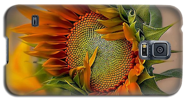 Beautiful Sunflower Galaxy S5 Case