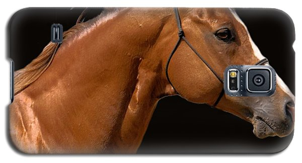 Beautiful Thoroughbred Galaxy S5 Case