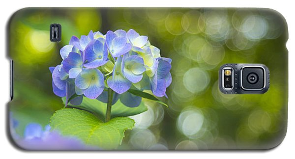 Beautiful Violet Hydrangea With Green Leaves And Bokeh Lights Galaxy S5 Case
