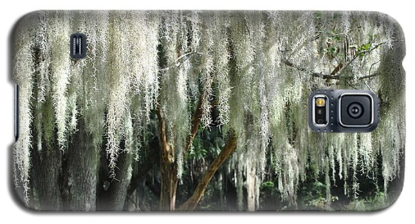 Galaxy S5 Case featuring the photograph Beautiful White Spanish Moss Hanging From Trees by Jodi Terracina