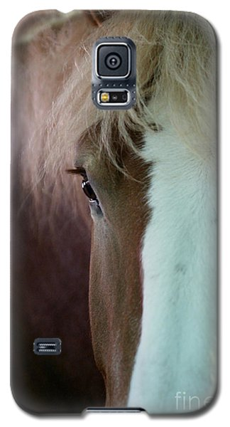Galaxy S5 Case featuring the photograph Beautiful Within Him Was The Spirit - 1 by Linda Shafer