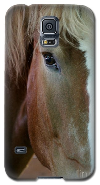 Galaxy S5 Case featuring the photograph Beautiful Within Him Was The Spirit - 2 by Linda Shafer