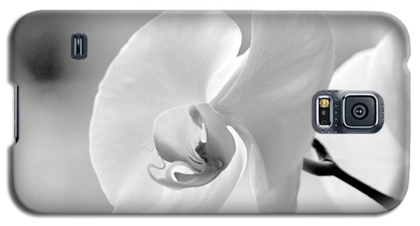 Galaxy S5 Case featuring the photograph Beautifully Soft by Silke Brubaker