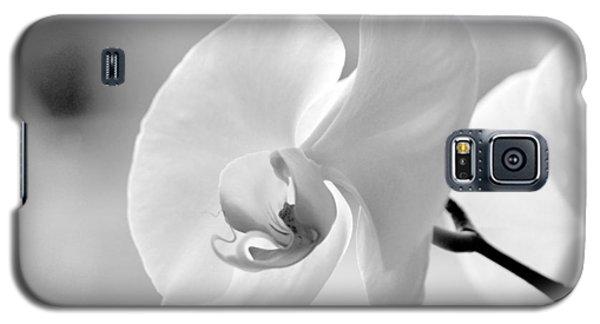 Beautifully Soft Galaxy S5 Case by Silke Brubaker