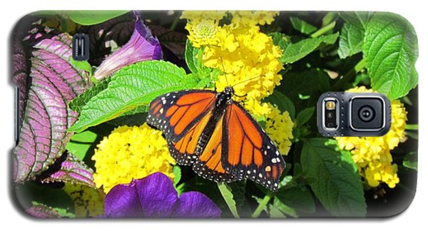 Galaxy S5 Case featuring the photograph Beauty All Around by Cynthia Guinn