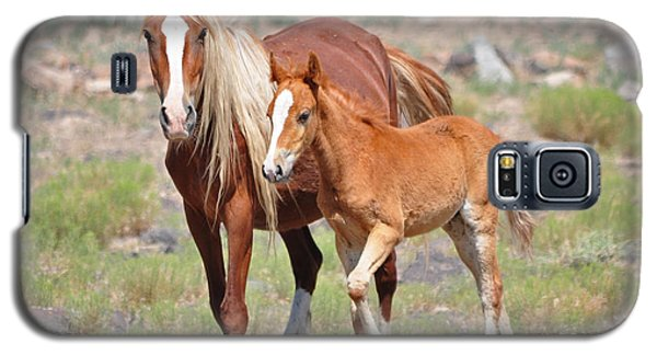 Beauty And Her Foal Galaxy S5 Case