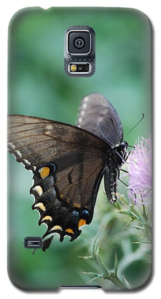 Beauty And Thistle Galaxy S5 Case