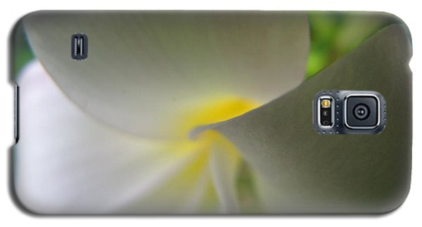 Galaxy S5 Case featuring the photograph Beauty by Beth Vincent