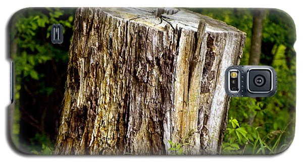 Beauty Endures Galaxy S5 Case
